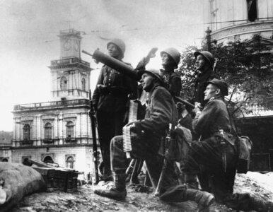 """Niemcy o Polakach we Wrześniu 1939 roku: """"bronili się naprawdę dzielnie"""""""