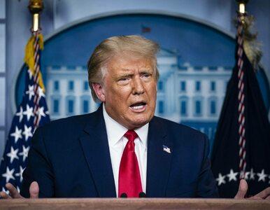 Administracja Trumpa zakazuje TikToka w Stanach Zjednoczonych