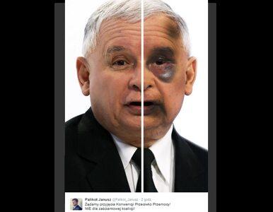 Kaczyński i Piechociński pobici. Nowe plakaty Palikota