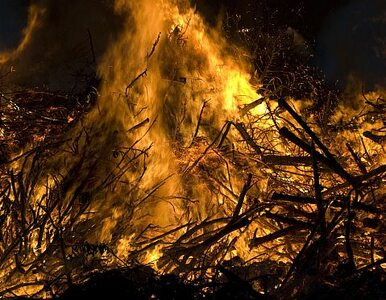 MSW apeluje: nie wypalajcie traw!