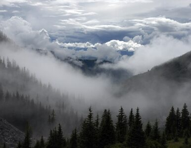 Słowacja zamyka górskie szlaki