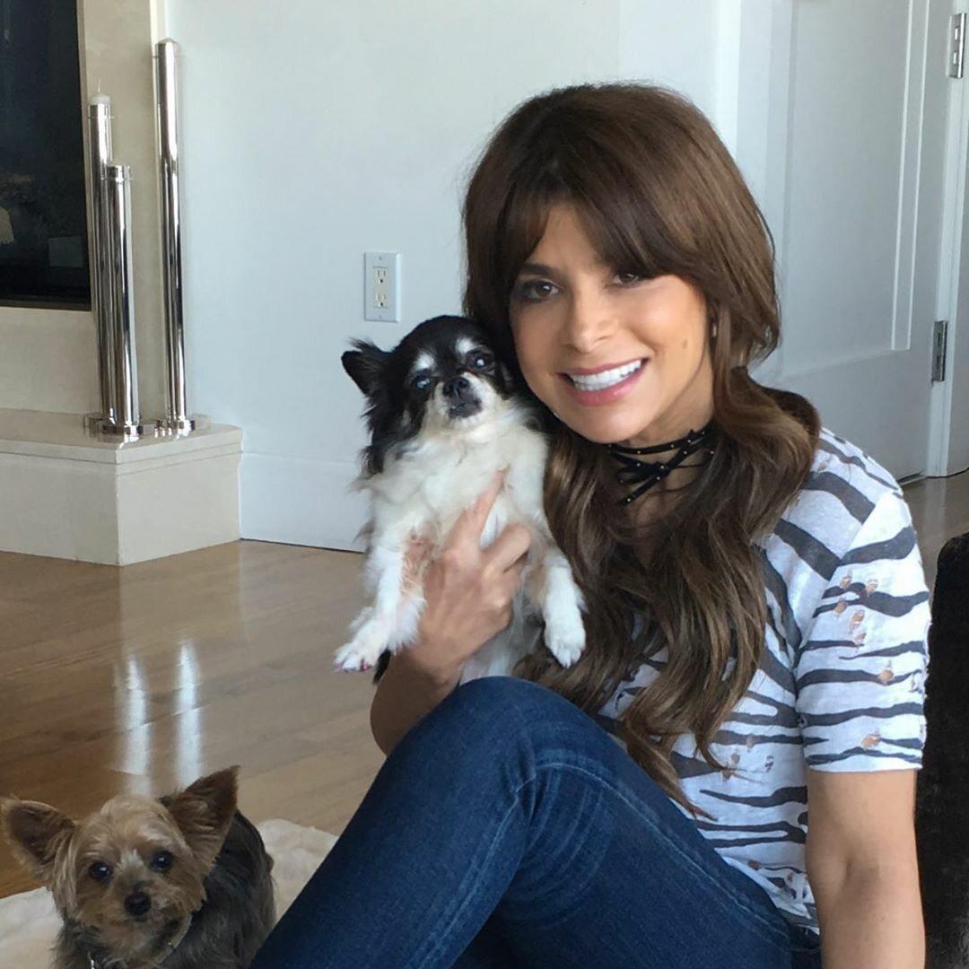 Paula Abdul ze swoimi psami – Tinkerbell i Charity