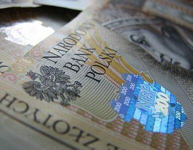 MSW dostanie miliard złotych więcej niż przed rokiem