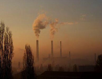 Działania KE doprowadzą do wzrostu cen energii?