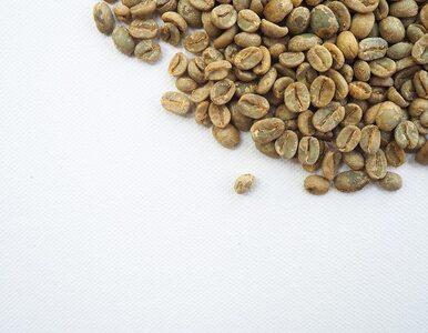 Czy zielona kawa jest korzystna dla zdrowia i pomaga schudnąć?