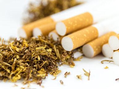 Beverly Hills zabrania sprzedaży tytoniu. Zakaz dotyczy też e-papierosów...