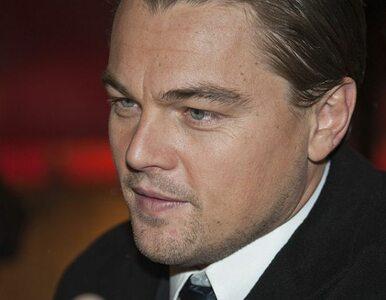 Leonardo di Caprio wcieli się w oszusta milionera z Wall Street