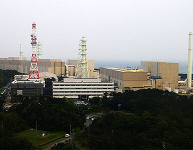 Japonia: elektrownia atomowa wyłączona do odwołania