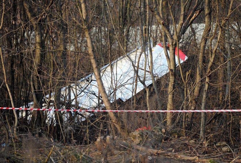 Katastrofa smoleńska, Tu-154M