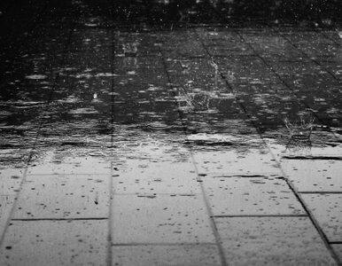 Przelotne opady deszczu i burze. Prognoza pogody na środę