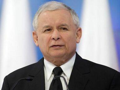 Kaczyński: PE to nie miejsce zsyłki dla upadłych polityków i celebrytów