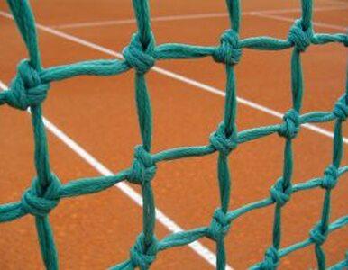 Turniej ATP w Bastad: Ferrer najlepszy