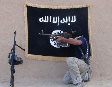"""Kolejny """"minister wojny"""" Daesh zlikwidowany"""
