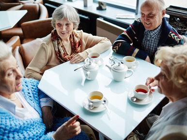 500+ dla emerytów. Nowy pomysł PiS skierowany do seniorów