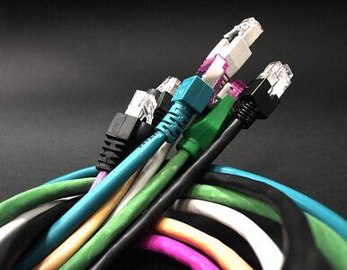 Urząd Komunikacji Elektronicznej uwalnia internet