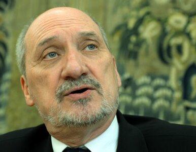 Poseł PO: Macierewicz sieje teorie spiskowe