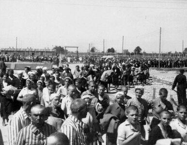 Głód w Auschwitz. Zbrodnicza fascynacja niemieckich lekarzy i...