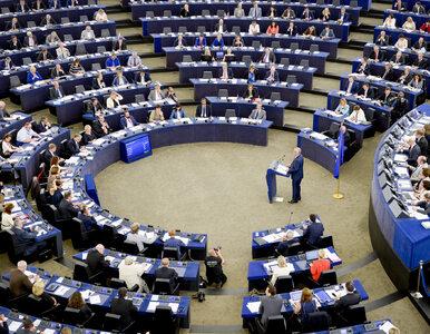 Prognoza wyniku wyborów do PE. Które partie mają szanse na mandaty?