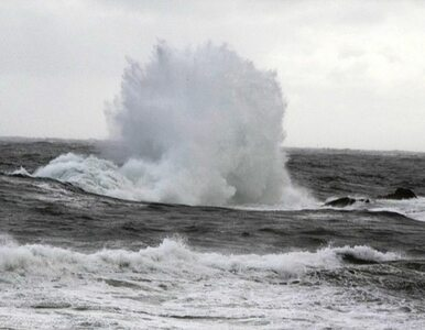Tragedia na Morzu Śródziemnym. Przemytnicy umyślnie zatopili łódkę?