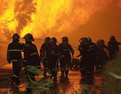 Ogromny pożar w Kalifornii. Winny myśliwy