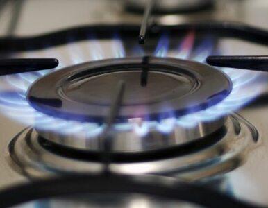 Ukraina będzie płacić zaliczki za gaz? Putin wstrzymuje decyzję