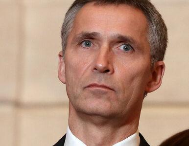 Gruzja coraz bliżej NATO? Powstanie tam baza Sojuszu