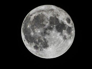 """Superksiężyc już dziś w nocy. Jak i kiedy obserwować """"wilczą pełnię""""?"""