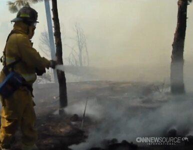 Gigantyczne pożary w Kalifornii. Ludzie musieli uciekać z domów