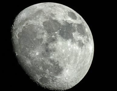NASA dokonała niesamowitego odkrycia na Księżycu. Dostrzeżono...