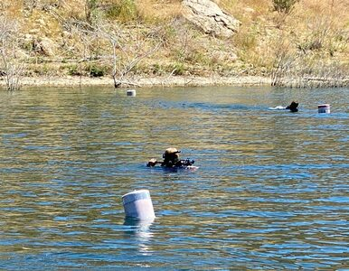 Z jeziora wyłowiono ciało. To zaginiona aktorka?