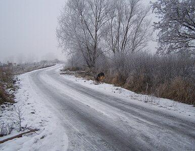 Świąteczna pogoda nas nie rozpieści