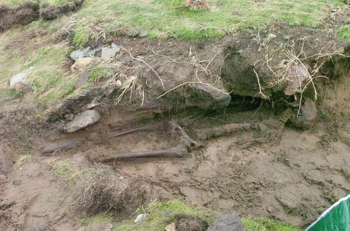 Szkielet znaleziony w Kilmore Quay