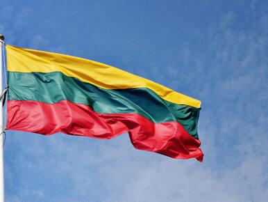 Litwa nie poprze sankcji wobec Polski w ramach procedury z art. 7