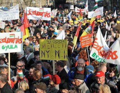"""Polska prawica popiera Orbana. """"Węgry są atakowane, możemy być następni"""""""