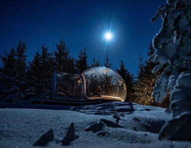 Zorza polarna widoczna z łóżka? W tym niezwykłym hotelu to możliwe