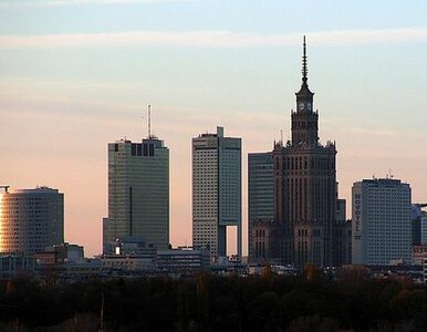Warszawa: Po ulicach i cmentarzach przechadzał się łoś