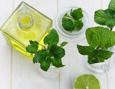 8 olejków eterycznych na oparzenia słoneczne. Który warto wybrać?