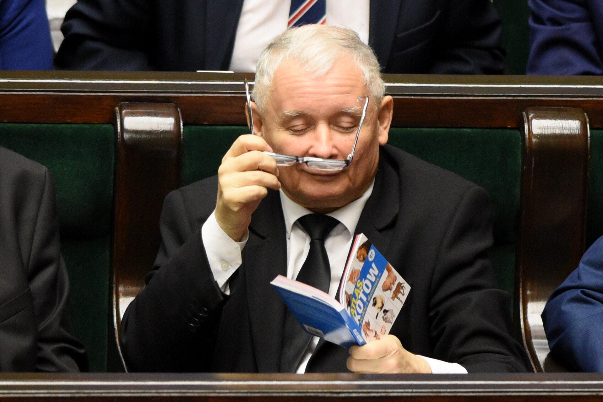 Te zdjęcia Jarosława Kaczyńskiego podbijają sieć
