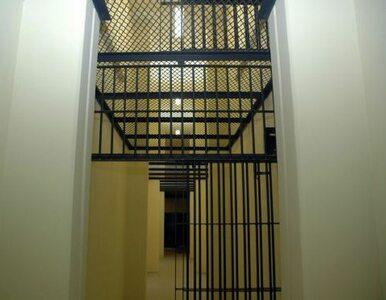 Szeryf karci więźniów. Chleb z wodą za profanację flagi USA