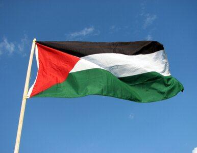 Portugalski parlament uzna Palestynę