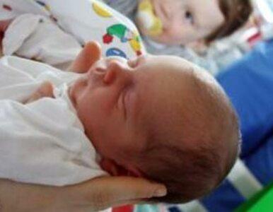 PiS: mamy program ratunkowy dla embrionów