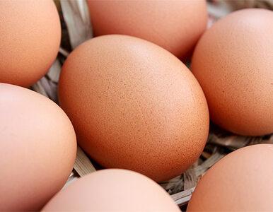 Po aferze solnej afera jajeczna?