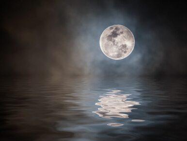 Księżyc myśliwych zaświeci wyjątkowo jasno. Obserwujcie niebo!