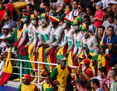 Kibice Senegalu pokazali klasę. Ich zachowanie wzbudziło zachwyt