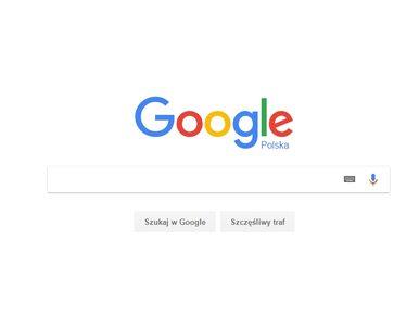 Grzyby, wniosek o 500+, Ucho Prezesa. Czego Polacy szukali w Google w...