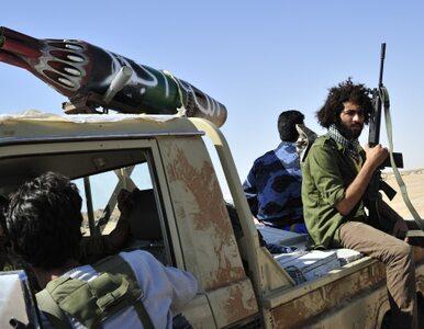Dania: dla nas rebelianci to libijski rząd