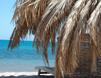 Egipt - wakacje z kulinariami. 10 potraw, których musisz spróbować