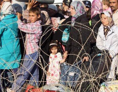 Syryjczycy masowo uciekają do Turcji