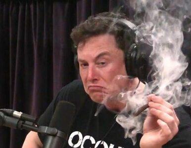 """Elon Musk nie śpi, bo oglądał """"Wiedźmina"""". Zgadnijcie, co nie daje mu..."""