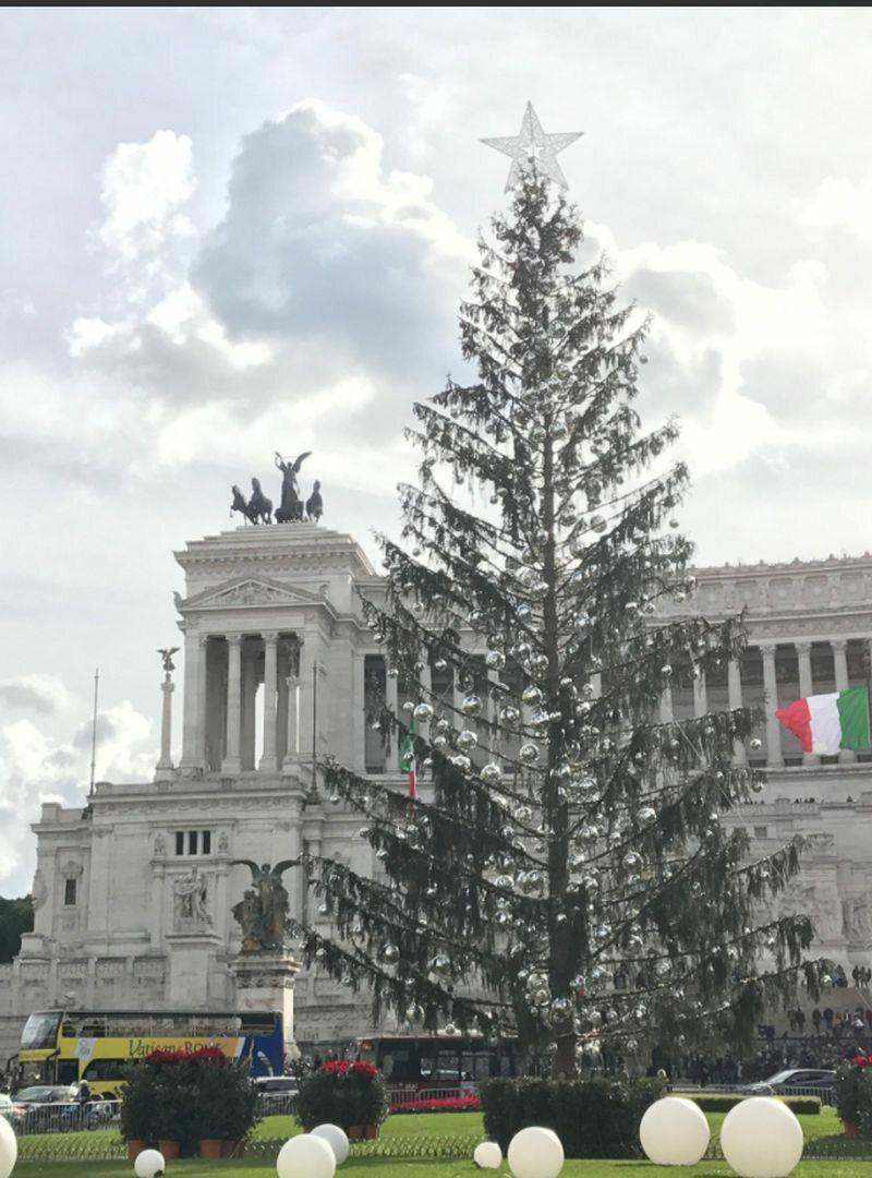 Choinka z Rzymu